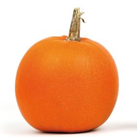 Halloween – Kürbisschnitzen